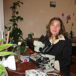 Афонина Екатерина Юрьевна<a href='http://elibrary.ru/author_counter_click.asp?id=565463' target=_blank><img src='http://elibrary.ru/images/science_index.png' width=11 height=20 border=0 title='Профиль автора в Science Index'></a>